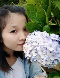 Cẩm Mịch Phan